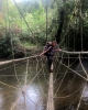 Hängebrücke auf dem Headhunter-Trail (Foto: chari , Gunung Mulu National Park, Sarawak, Malaysia am 06.01.2012) [2817]