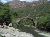 In der schönen Spelunca-Schlucht (Foto: katarina , Evisa, Korsika, Frankreich am 26.05.2012) [3569]