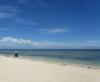 Maurer am Strand (Foto: chari , Gili Meno, Lombok, Indonesien am 13.12.2014) [4359]