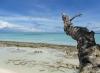 kleine Insel, großer Strand (Foto: chari , Pom Pom, Sabah, Malaysia am 01.03.2011) [2176]