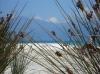 Natura (Foto: agnespavlo , Saint-Florent, Korsika, Frankreich am 30.05.2012) [3500]