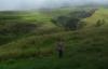 Weg durchs Grasland (Foto: chari , Sembalun Lawang, Lombok, Indonesien am 15.12.2014) [4576]
