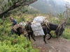 tägliche Versorgung der Spilios Ajapitos Hütte (Foto: katarina , Olympmassiv, Zentralmakedonien, Griechenland am 25.09.2010) [2026]
