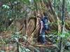 Größen-Vergleich (Foto: chari , Gunung Mulu National Park, Sarawak, Malaysia am 04.01.2012) [2802]