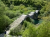 Die Bogenbrücke von Kipi (Foto: katarina , Monodendri, Epirus, Griechenland am 05.05.2016) [4811]