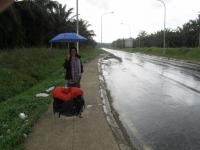 Auch hier regnet es mal ... (Foto: katarina , Sukau, Sabah, Malaysia am 22.02.2011) [2174]