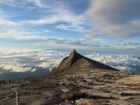 Southpeak (Foto: katarina , Gunung Kinabalu, Sabah, Malaysia am 09.01.2012) [2655]