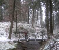 Brücke über den winterlichen Silberbach (Foto: chari , Silberbachtal, Oberes Weserbergland 36, Deutschland am 16.01.2016) [4628]