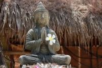 Buddha mit Frangipani Blüte (Foto: chari , Gili Meno, Lombok, Indonesien am 16.09.2016) [4723]