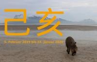 Erde-Schwein - Jihai (Foto: chari am 05.02.2019) [5120]