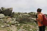 Gipfelanstieg (Foto: chari , Monte Incudine, Korsika, Frankreich am 10.06.2019) [5199]