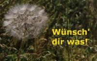 Wünsche für alle! (Foto: katarina , Bielefeld, Unteres Weserbergland 53, Deutschland am 05.09.2019) [5270]